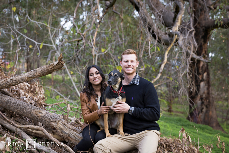 Engagement Photos Perth, pet portraits perth
