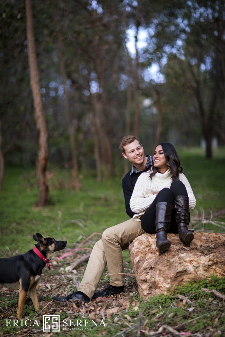 pet portraits perth, Engagement Photos Perth
