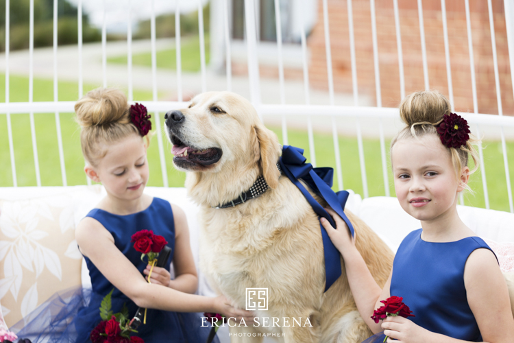 bluewater grill wedding, mardie & co, matthew landers, loui col designs, villa kula perth, wedding dog, flowergirls