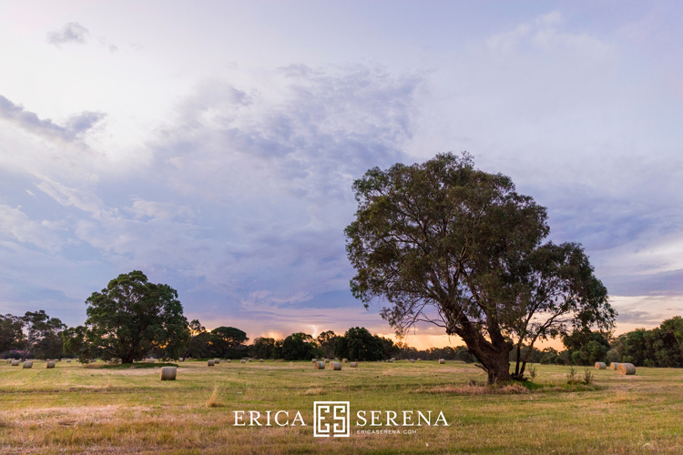 Perth wedding photographer, wedding photography perth, swan valley wedding, wedding at oakover winery middle swan,